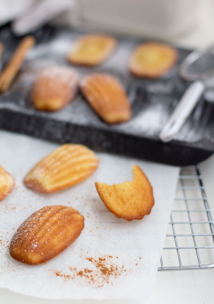 Speculaas madeleines
