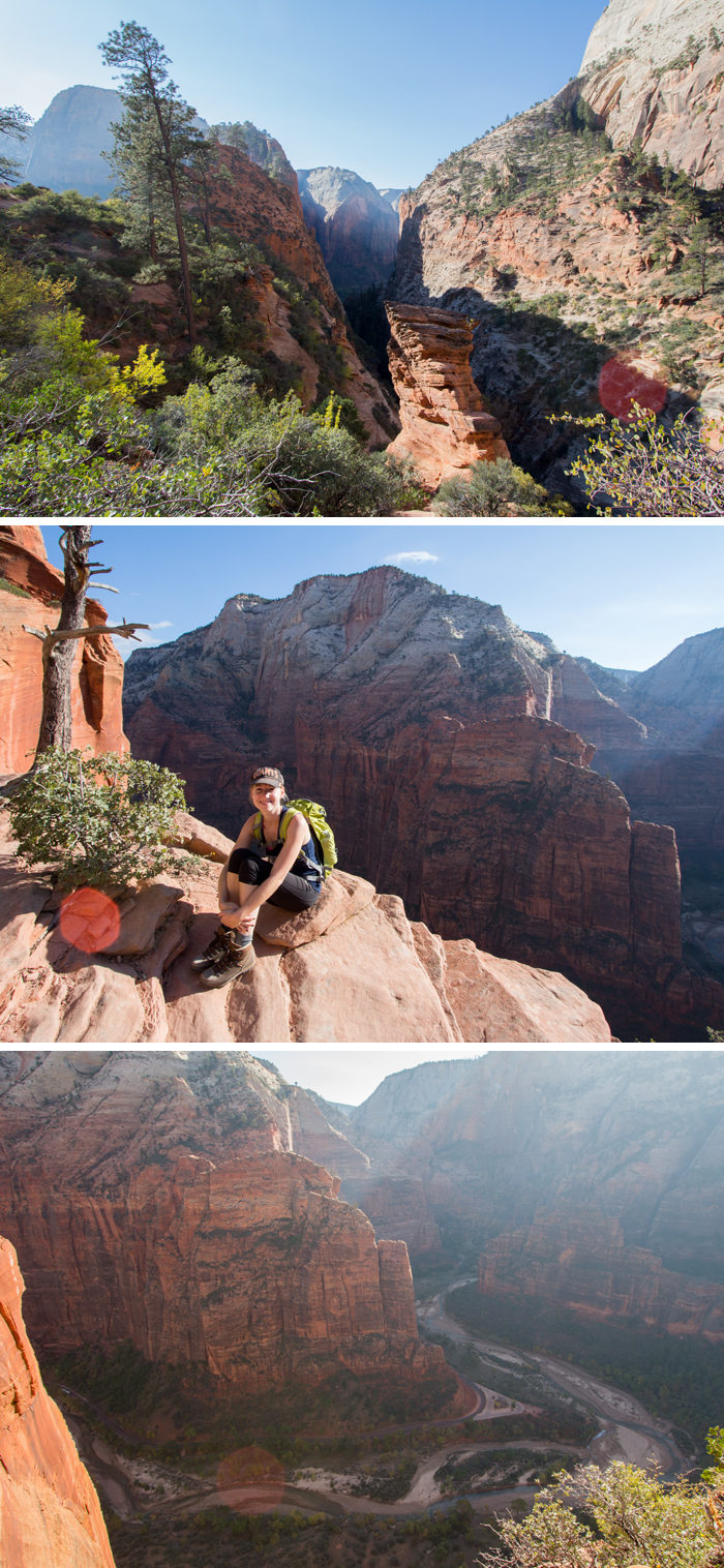 Scout Lookout in Zion