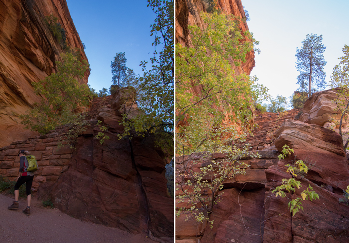 Walter's wiggles in zion