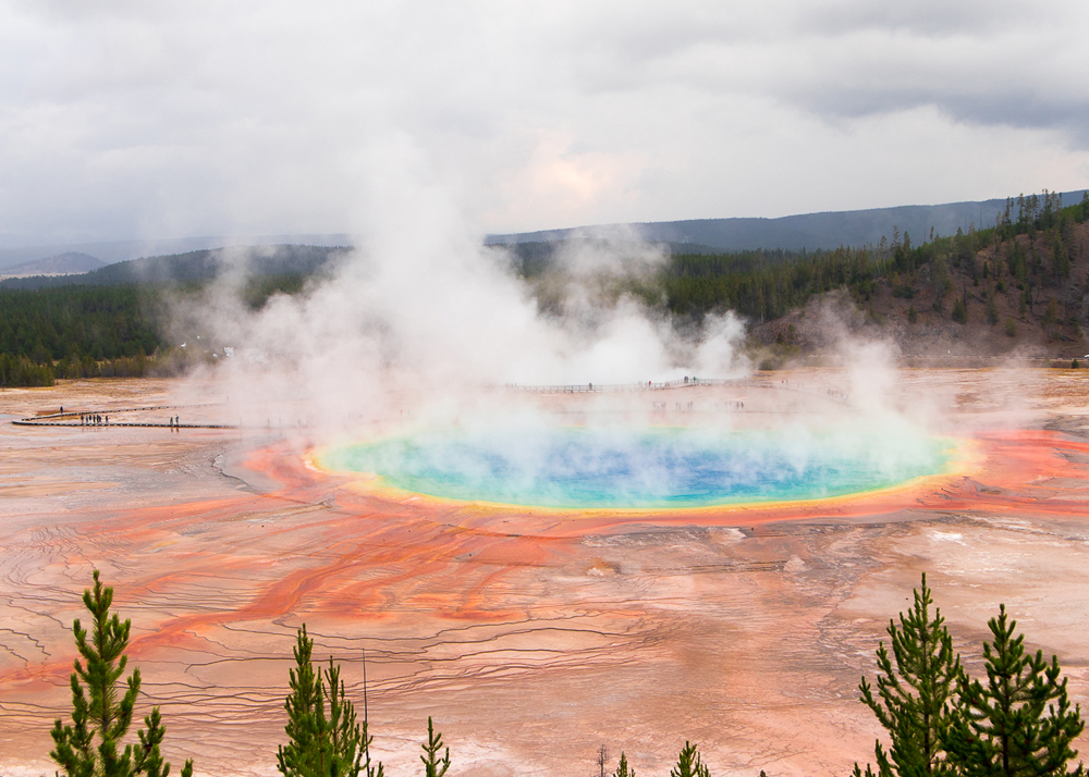 De Grand Prismatic Spring in Yellowstone