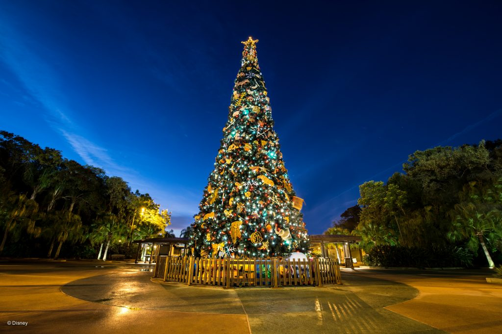 Kerstmis in Animal Kingdom Florida
